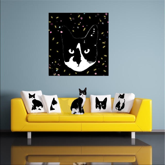Chica #freetoedit #myedit #creative #cute #mypet #catsofpicsart #catlover #decoration
