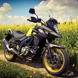 pcyellow suzukivstromxt motorcycle lumia950xl yellow