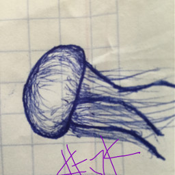 jellyfish fish doodle schooldoodle bored