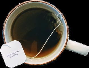 sctea tea yogitea kindness gift freetoedit