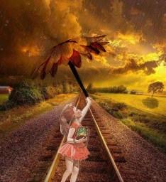 ircpinkflower flower girl railroadtrack