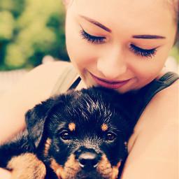 freetoedit rottweilerlove puppy petsandanimals lovebug