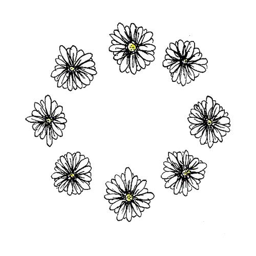 Circle Daisy Daisies Flowers