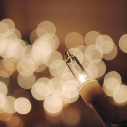 pcmacro macro freetoedit lights bokeh circlesallaround