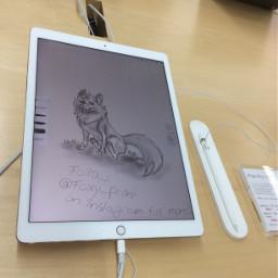 nicetablet tablet mediamarkt foxythefoxwolfhybrid