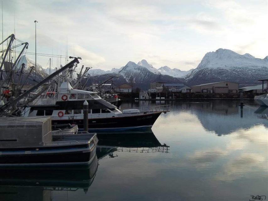 #freetoedit #bandaidgirl77 #smile #ijoketocope #yep #nature #earth #ocean #fishingboats #mountains #Colorado #Alaska #beautiful #snow #sky #clouds #smalls #naturephotography