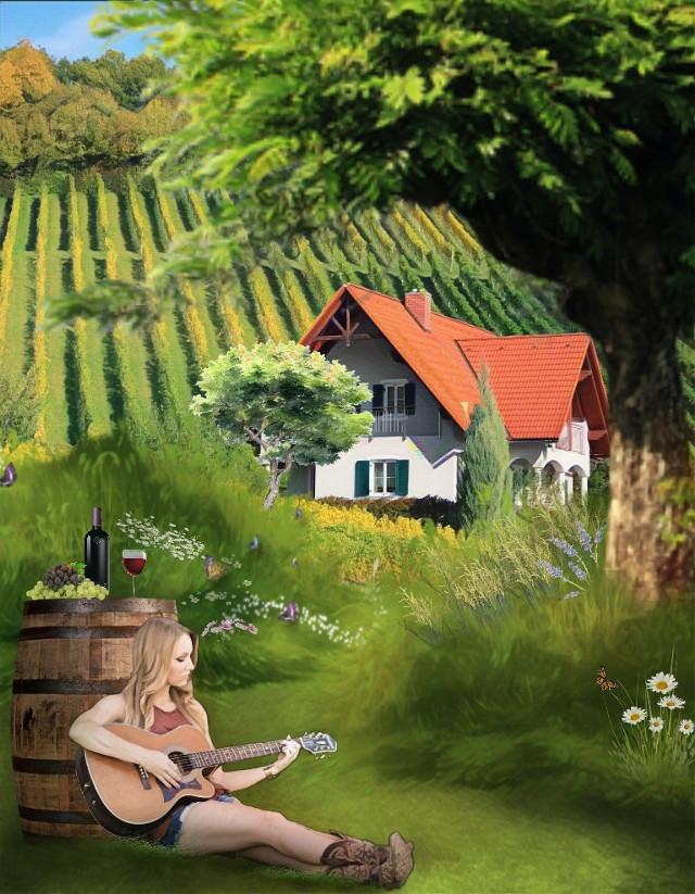 #freetoedit , #vineyard