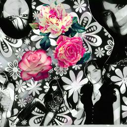 efectosmágicos efectos fotografía sticker collage freetoedit