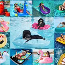 freetoedit poolfloats poolfloaties floaties collage ecsummercollage