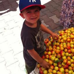 freetoedit pcfruitbasket fruitbasket pcfruitselfie fruitselfie pcsummerflatlay pcmarket pcthanksgivingday