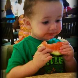 pcfruitselfie fruitselfie kobechristopher watermelon