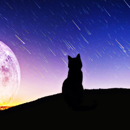 freetoedit simpleedit hdr2 moon cat