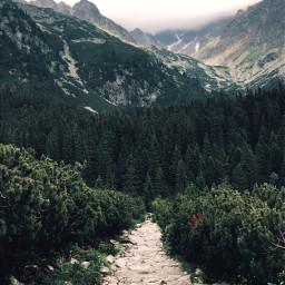 vysoketatry slovakia nature photography