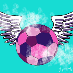 dcsports sports soccer wings soccerball