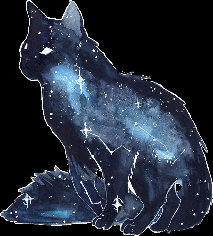 Cat Kitten Galaxy Watercolor Space Stars Freetoedit