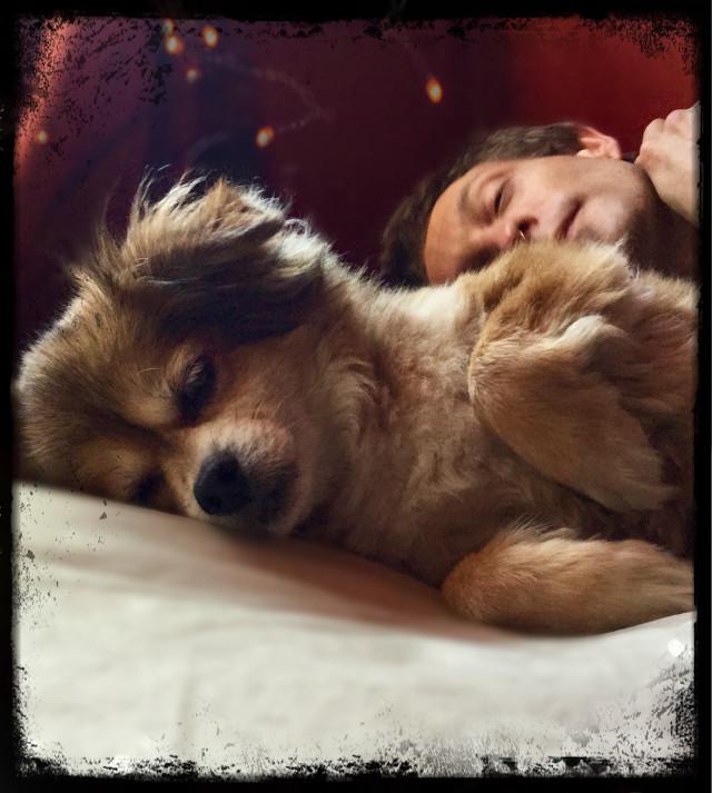 #Sleeping in 🐶🖤