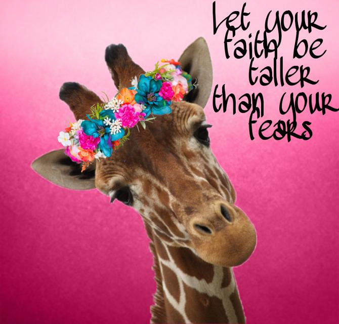 #giraffe #flowercrown