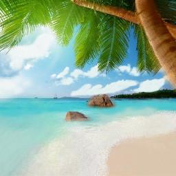 freetoedit dcbeachday beachday