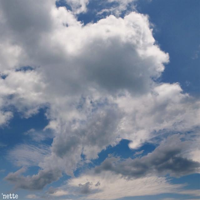 #freetoedit #cloudysky #myoriginalphoto