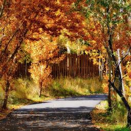 angeleyesimages nikon nikonusa nikonphotography autumncolors
