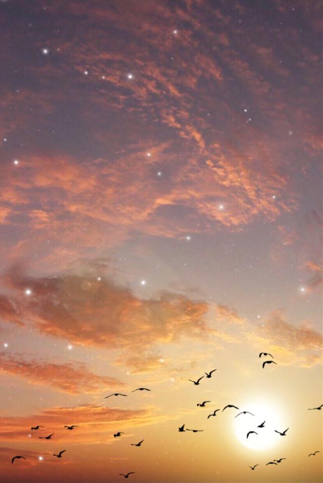 #freetoedit #sky #sun #stars #birds #nature #picsart