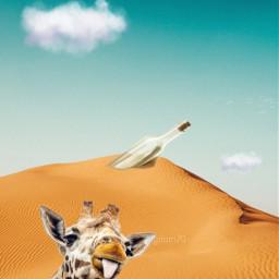 freetoedit jirafe jirafa jiraffe giraffa