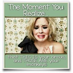 meme circus humor funny quotes freetoedit
