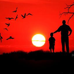 freetoedit fatherandson silhouette sunsetphotography sunsetsilhouette