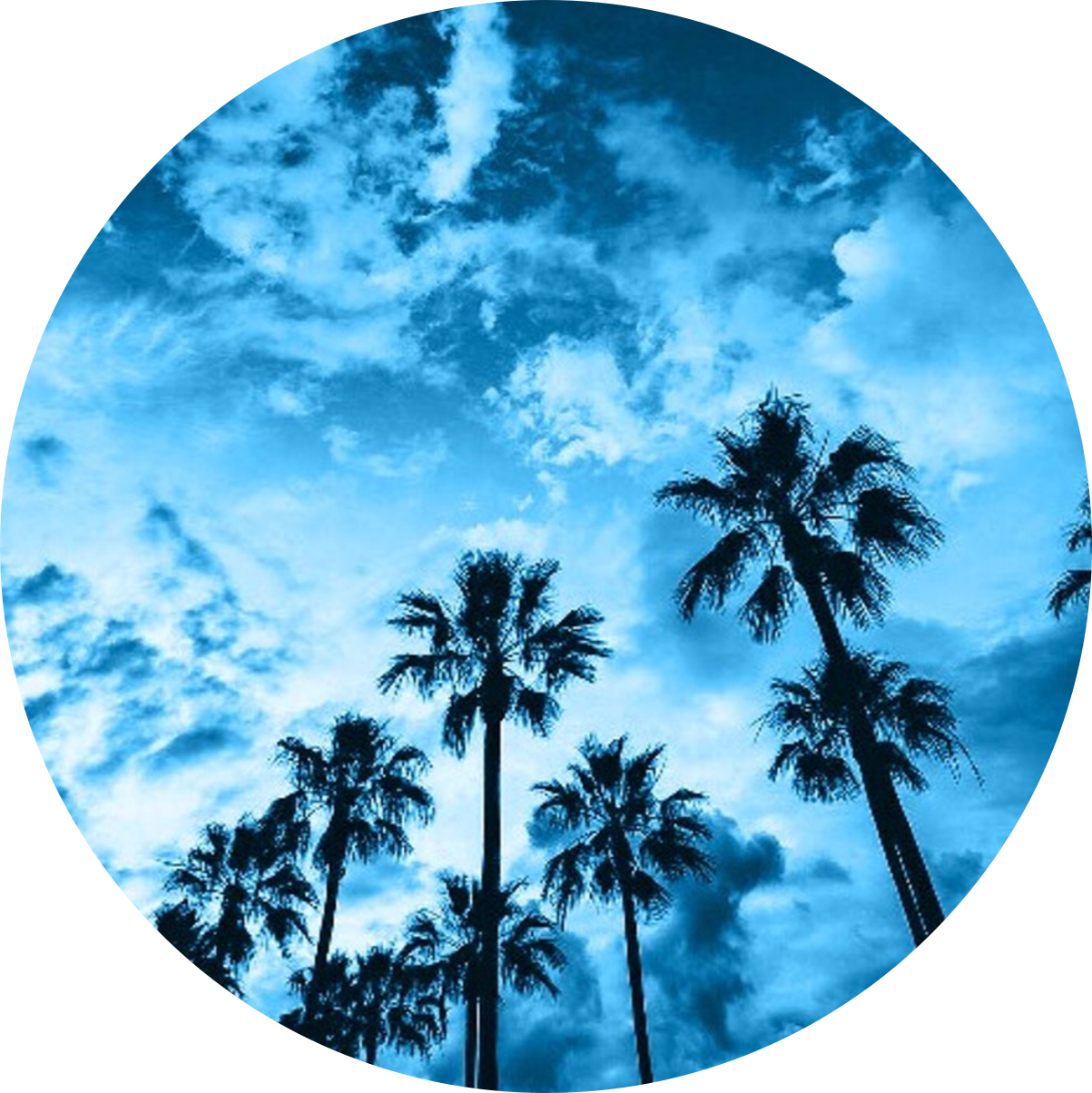 Blue Blueaesthetic Aesthetic Art California Sky Beach