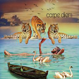 freetoedit carpediem fantasyart colorful tiger