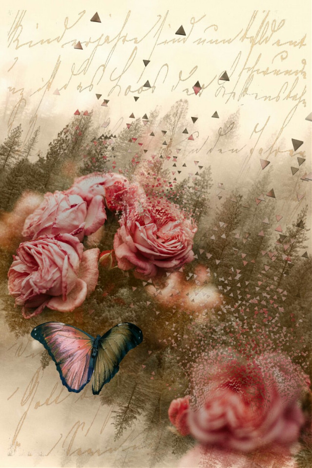 #freetoedit #doubleexposure #textoverlay #dispersiontool #retroeffect #roses #butterfly Op @freetoedit @4asno4i