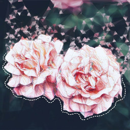 freetoedit aesthetic flower rose
