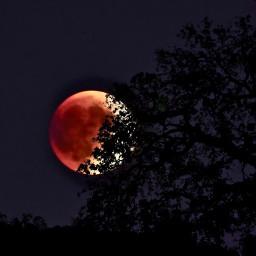 angeleyesimages bloodmoon moonset gorgeousmoon beautifullandscape freetoedit