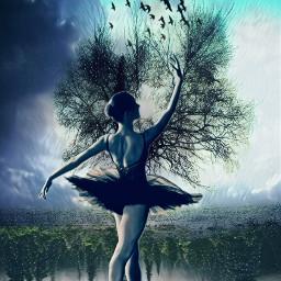 freetoedit dancinggirl treesoflife surrealistic