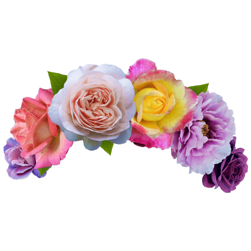 Fridakahloflowercrown frida kahlo flower crown flowers fridakahloflowercrown frida kahlo flower crown flowers izmirmasajfo