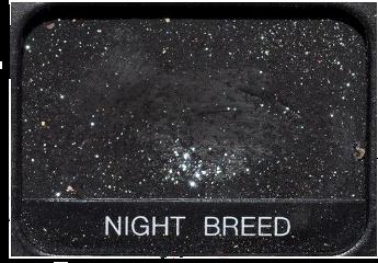 night breed makeup eyeshadow pallet