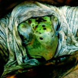 turtletime speedy male mypet💖 desert