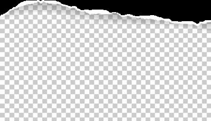 paper ripped rippedpaper freetoedit