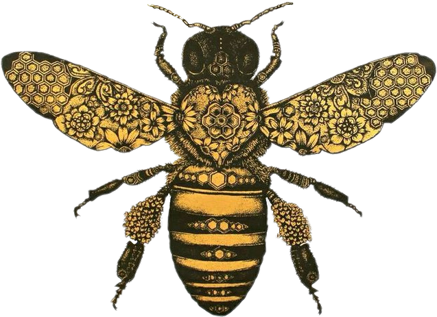 #Bee #naturesbeauty #vintagestyle