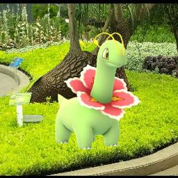 freetoedit meganium pokemon