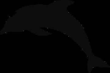 scsilhouette silhouette magic delfin freetoedit