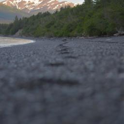 beach alaska photography depthoffield photooftheday freetoedit