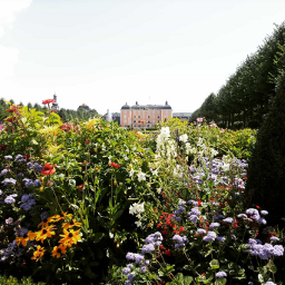flower castle homebase