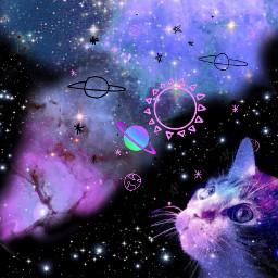 galaxy universe spray paint cat ircsprayonthepink freetoedit