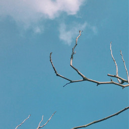 freetoedit summer sky