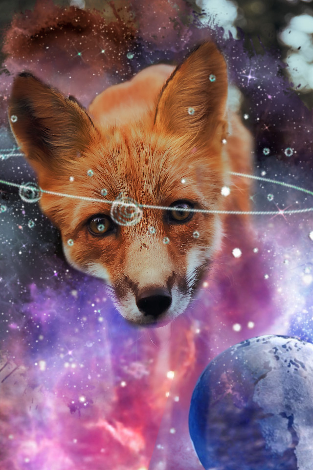 #freetoedit #foxy #galaxyfox #art #nightsky #nature