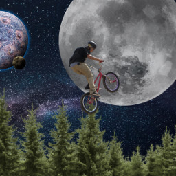 freetoedit trees bicycleride bicycle surrealism
