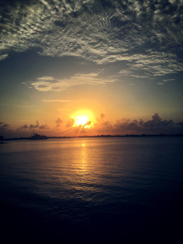 #freetoedit #moodygardens #sunset #bright