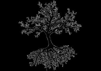treeoflife freetoedit