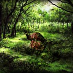 freetoedit nature interesting art